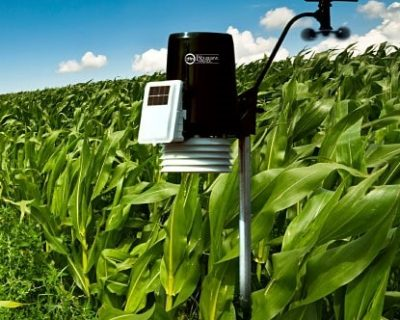 On-farm weather station providing information including temperature, wind speed and direction, and rainfall, as well as historic data and forecasting.